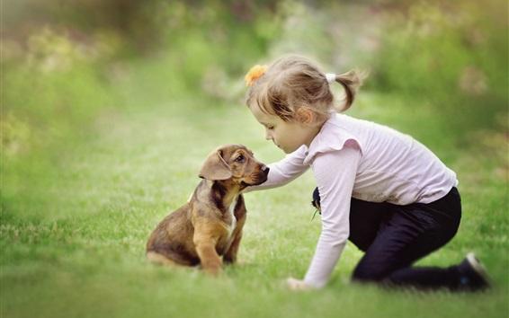 배경 화면 어린 소녀와 개가 친구입니다.