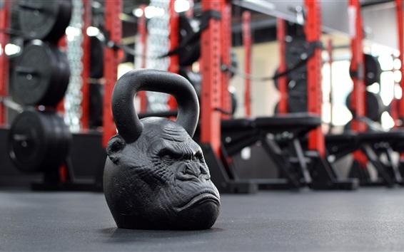 Wallpaper Monkey head dumbbell, gym