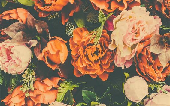 Wallpaper Orange and pink peonies, artificial flower