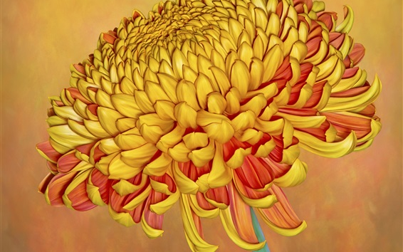 Papéis de Parede Crisântemo laranja, close-up de flor