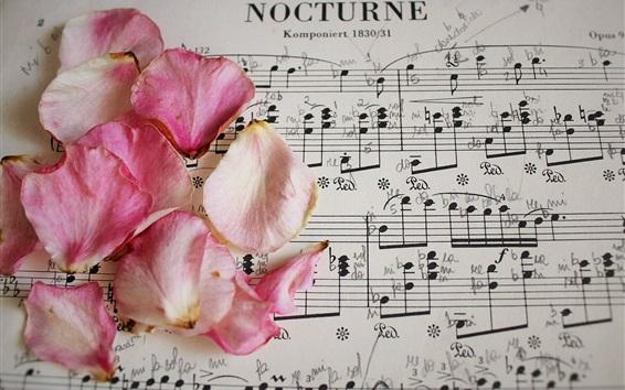 Papéis de Parede Pétalas de rosa cor de rosa, partitura