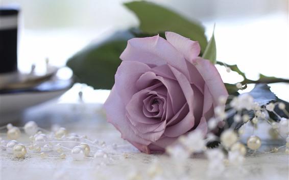 Обои Фиолетовая роза, бусины