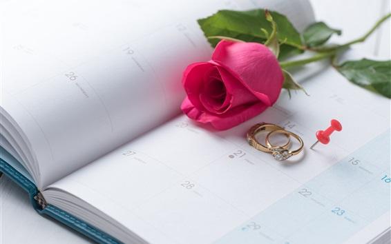 Обои Красная роза, кольца, День святого Валентина