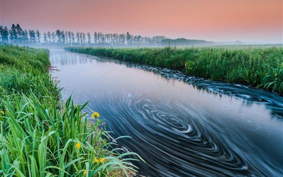 Wallpaper River, grass, fog, morning