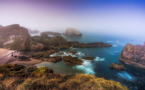 Fond d'écran Ecosse, côte, mer, rochers, brouillard, matin