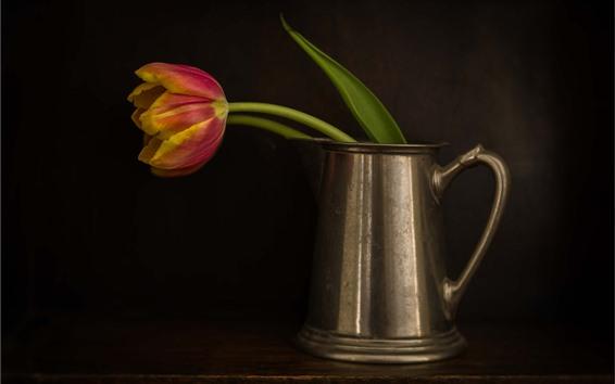 Wallpaper Single tulip, kettle