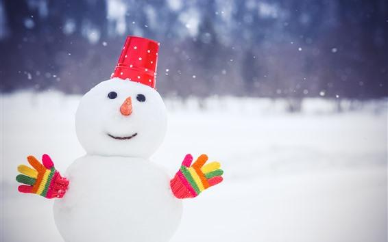 Fond d'écran Bonhomme de neige, gants colorés, neige, hiver