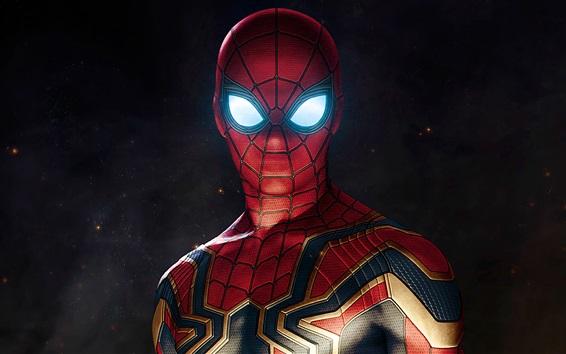 Fond d'écran Spider-man, super-héros, BD, photo d'art