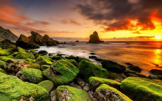Wallpaper Stones, moss, sea, clouds, sunset