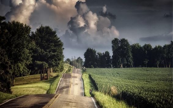 Wallpaper Summer, fields, road, trees, clouds