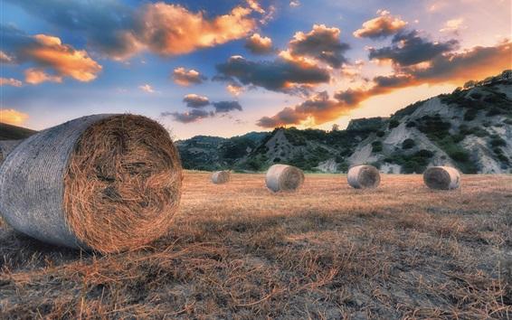 Fondos de pantalla Verano, heno, hierba, nubes, puesta de sol