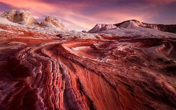 Fond d'écran USA, Arizona, désert, lever du soleil, rochers