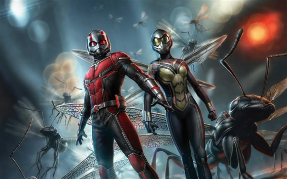 Wallpaper Ant-Man, Marvel, art picture