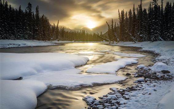 Обои Национальный парк Банф, Альберта, Канада, снег, зима, деревья