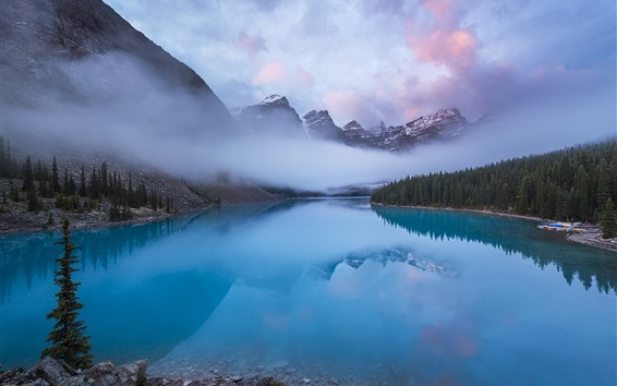 Wallpaper Canada, Rocky mountains, lake, forest, morning, fog