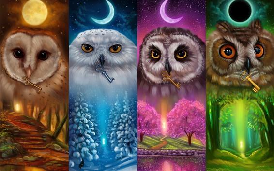Wallpaper Colorful owls, four season, art picture