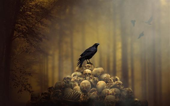 Wallpaper Crow, skulls