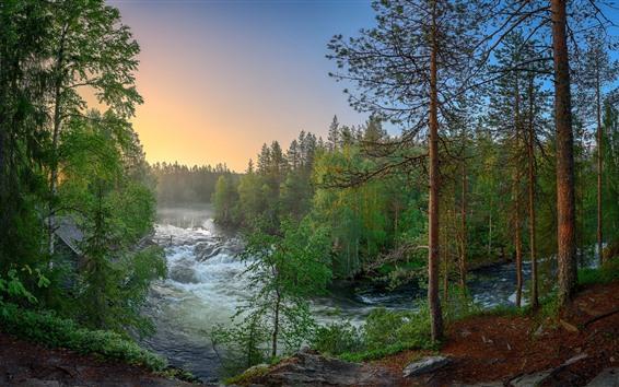 Fondos De Pantalla Finlandia Bosque árboles Río Paisaje