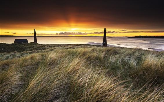 Wallpaper Grass, sea, dusk, sunset