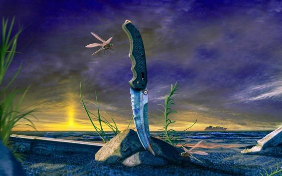 Обои Нож, стрекоза, трава, море, облака, сумерки