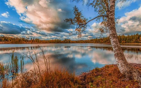 Обои Озеро, вода, деревья, облака, осень