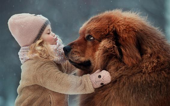 Fond d'écran Petite fille et mastiff tibétain, amitié