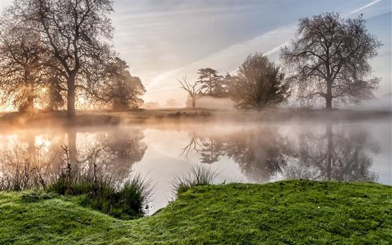 壁紙 朝、木々、川、草、霧、太陽の光線