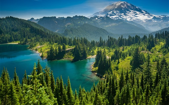 Fond d'écran Mont Rainier, Lac Eunice, Etat de Washington, Etats-Unis, arbres, nature