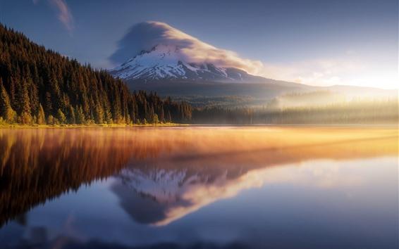 Fondos de pantalla Montañas, bosque, niebla, lago, reflejo de agua