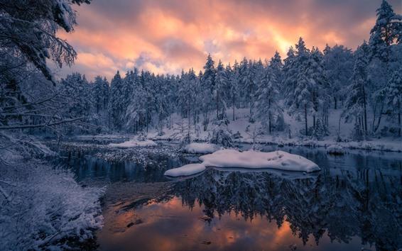 Обои Норвегия, деревья, зима, снег, закат