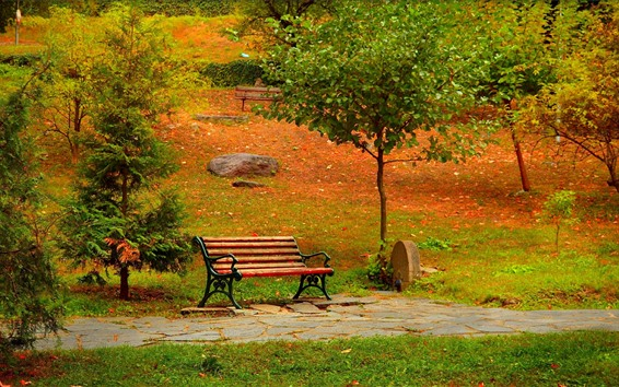 Wallpaper Park, trees, bench, path, autumn