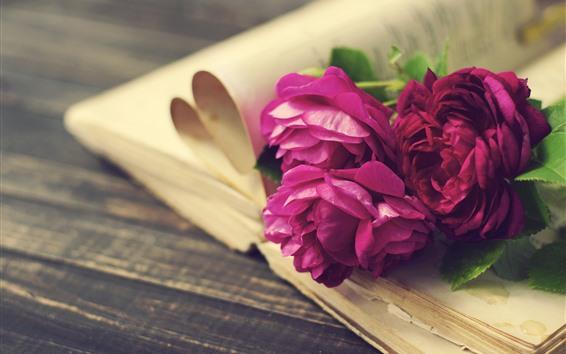 Fond d'écran Roses roses et rouges, fleurs, livre