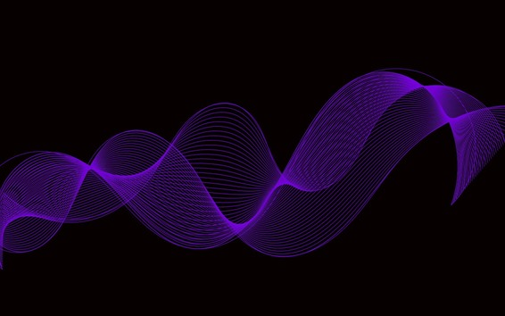 Wallpaper Purple curves, black background, abstract