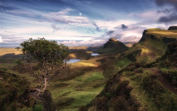 Обои Шотландия, Остров Скай, деревья, озеро, облака, луна