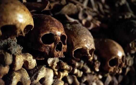 Papéis de Parede Crânios, ossos, horror