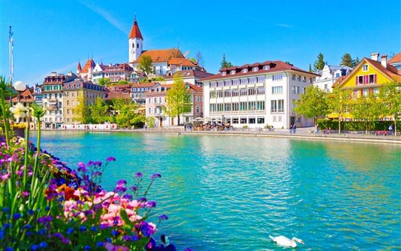 Papéis de Parede Suíça, thun, rio, cidade, cisne