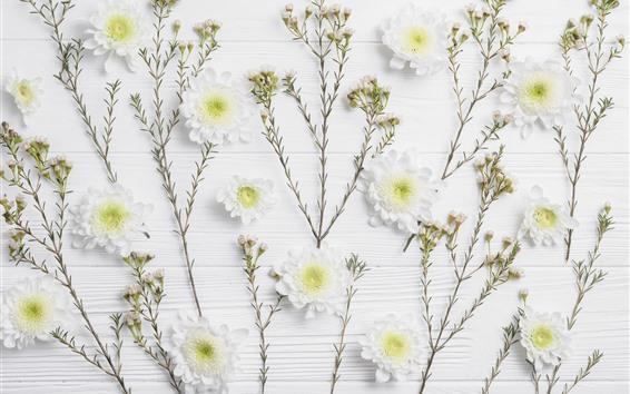 Papéis de Parede Crisântemo branco, placa de madeira