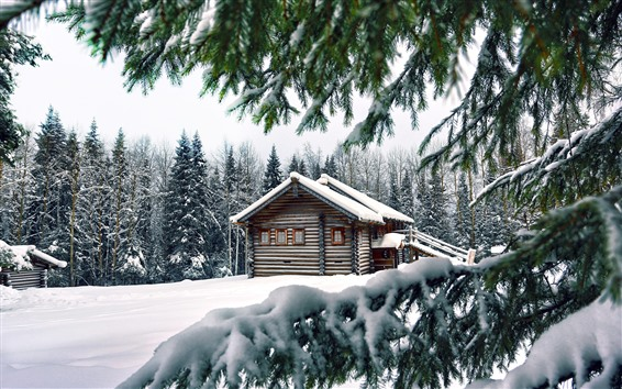 Wallpaper Winter, snow, pine trees, wood house