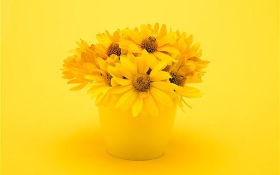 Papéis de Parede Crisântemo amarelo, vaso, buquê