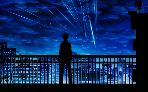 Wallpaper Your Name, meteor, boy, silhouette, fence, bike