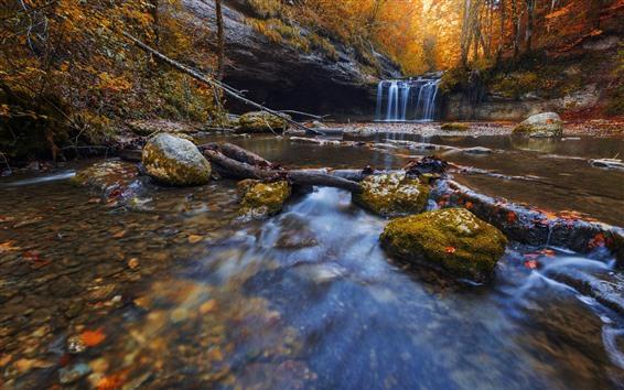 배경 화면 가을, 숲, 개울, 폭포, 돌