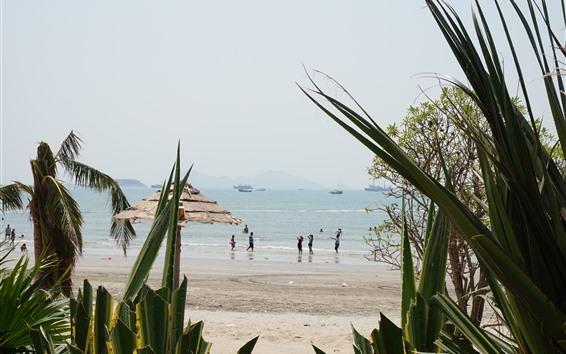 Fondos de pantalla Playa, mar, barco, gente, plantas, Huizhou, China