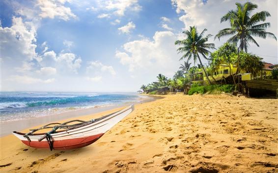 Wallpaper Boat, beach, sea, palm trees, tropical