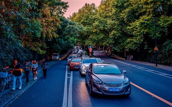 Обои Автомобили, дороги, деревья, трафик