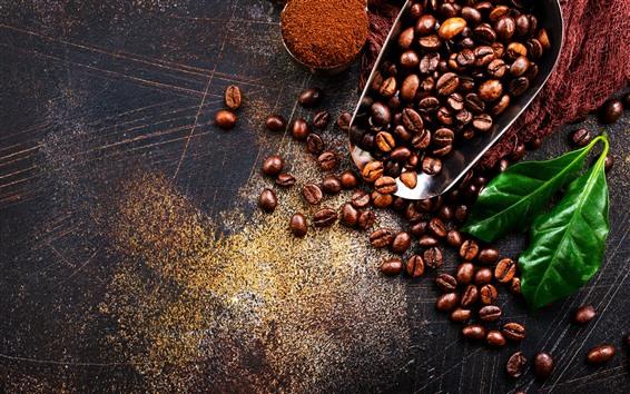 壁紙 コーヒー豆、緑の葉、粉