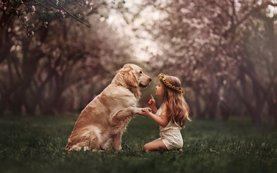 Fond d'écran Jolie petite fille et chien, guirlande, prairie