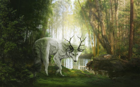 Wallpaper Fantasy animal, wolf or deer, forest