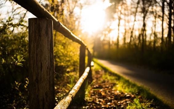 Papéis de Parede Cerca, estrada, sol, nebuloso