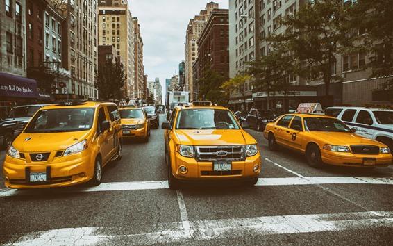 Обои Ford Taxi, желтые автомобили, город, Нью-Йорк