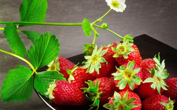 Wallpaper Fresh strawberry, flowers, delicious fruit